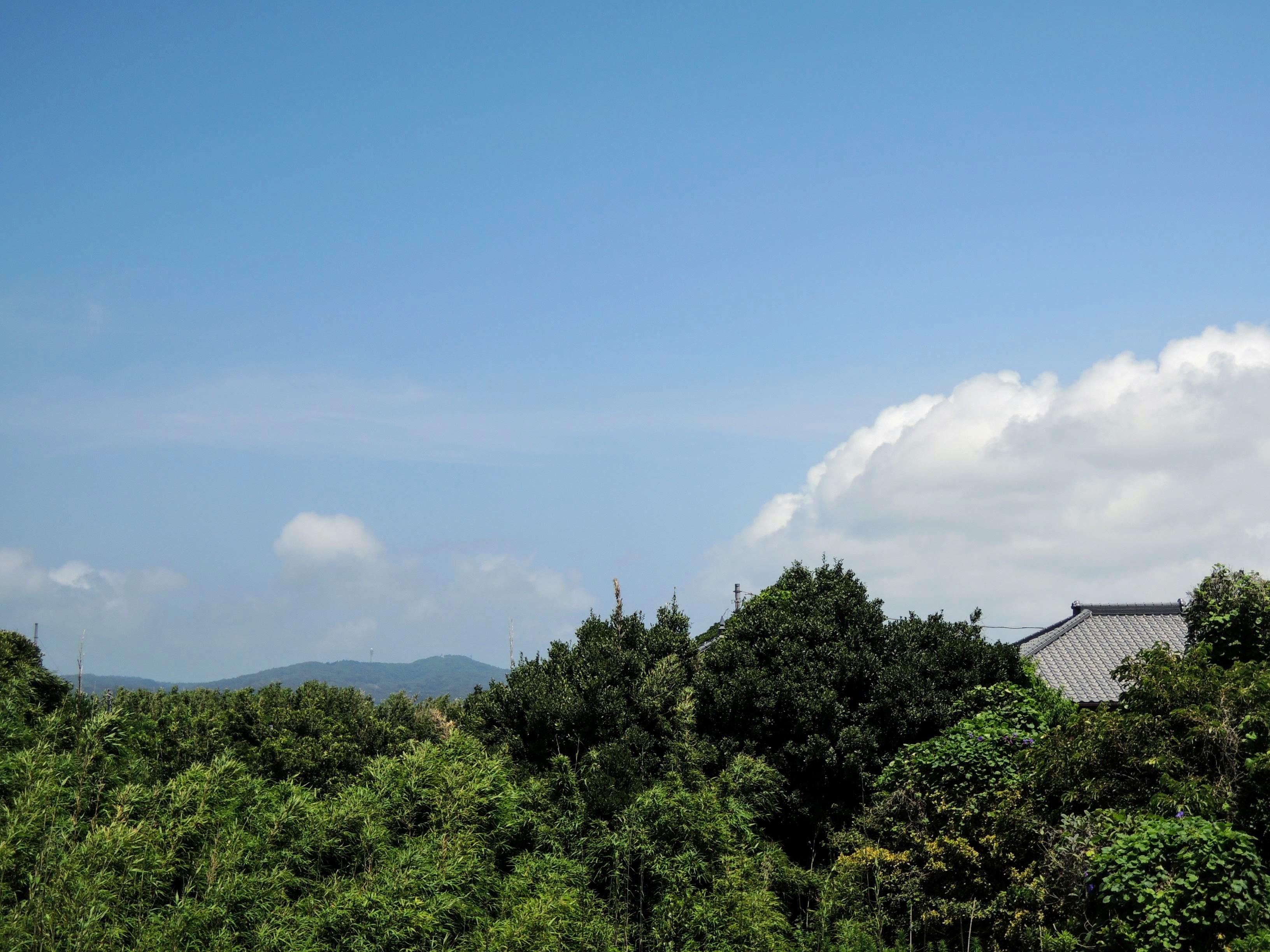 遠くに見える夏雲
