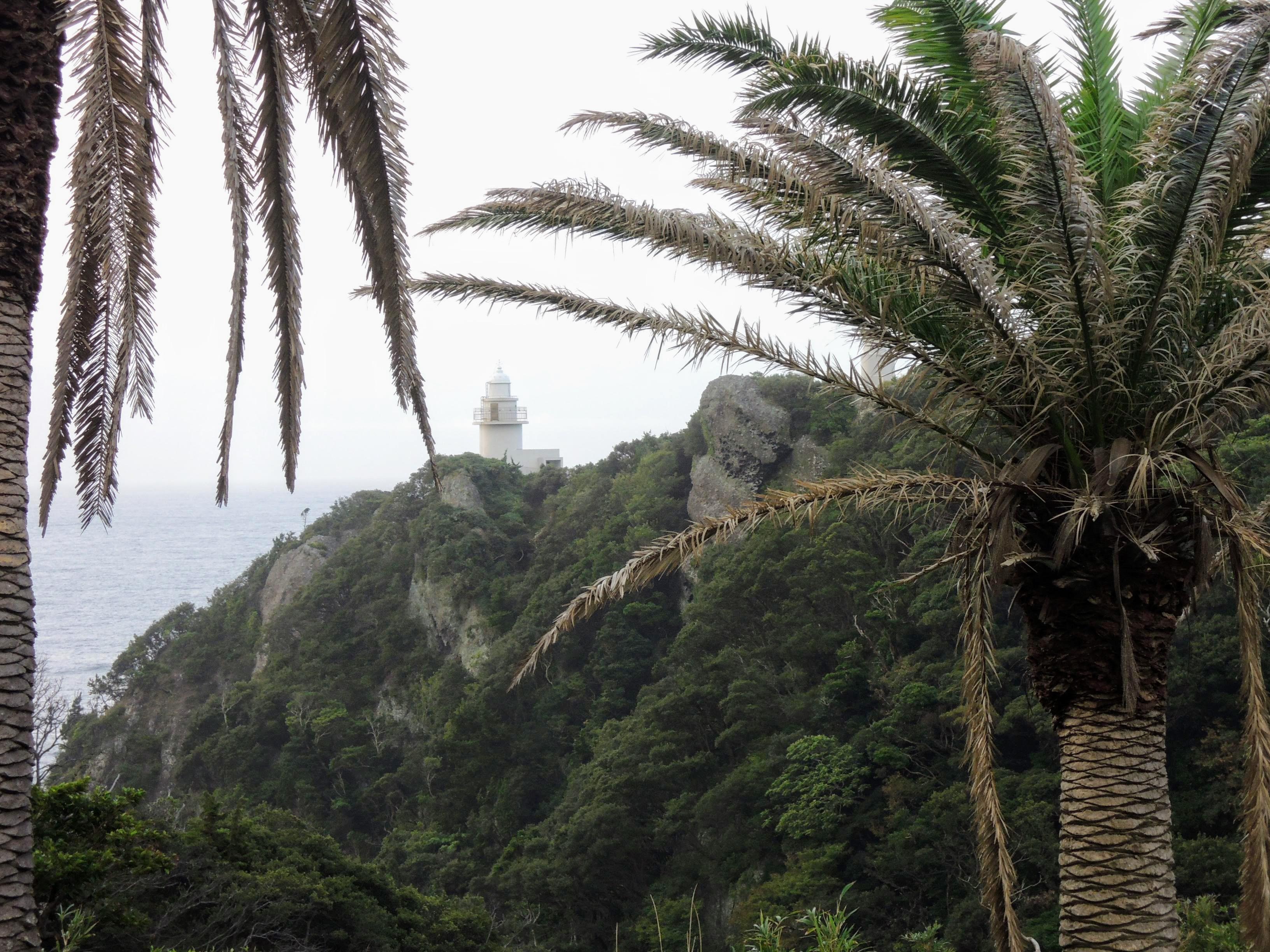 石廊崎灯台を望む