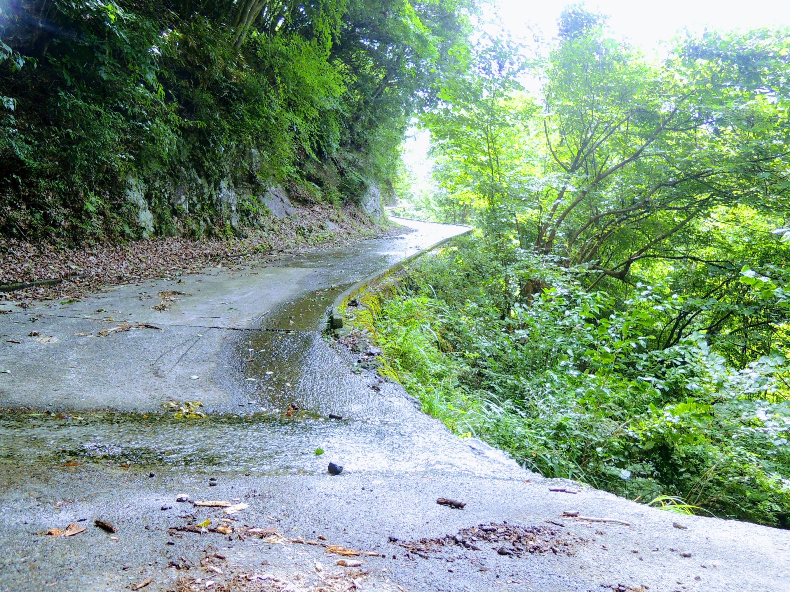 豪雨の影響で荒れた峠道