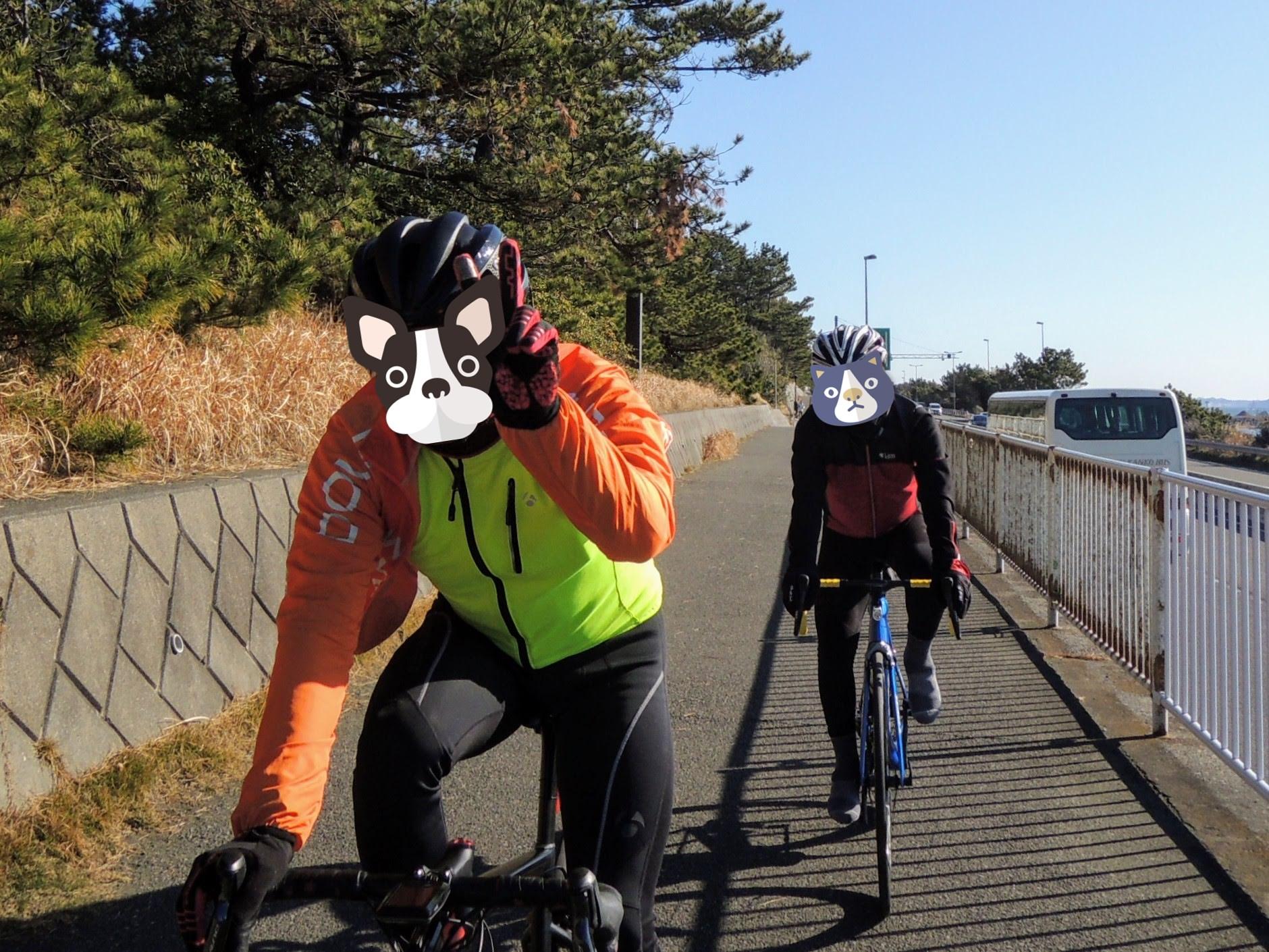太平洋岸自転車道を走る