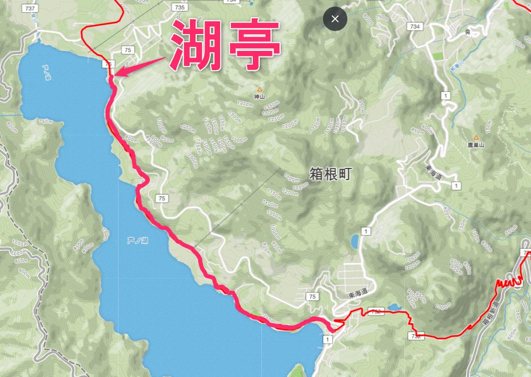 芦ノ湖湖畔を走り湖亭までのルート