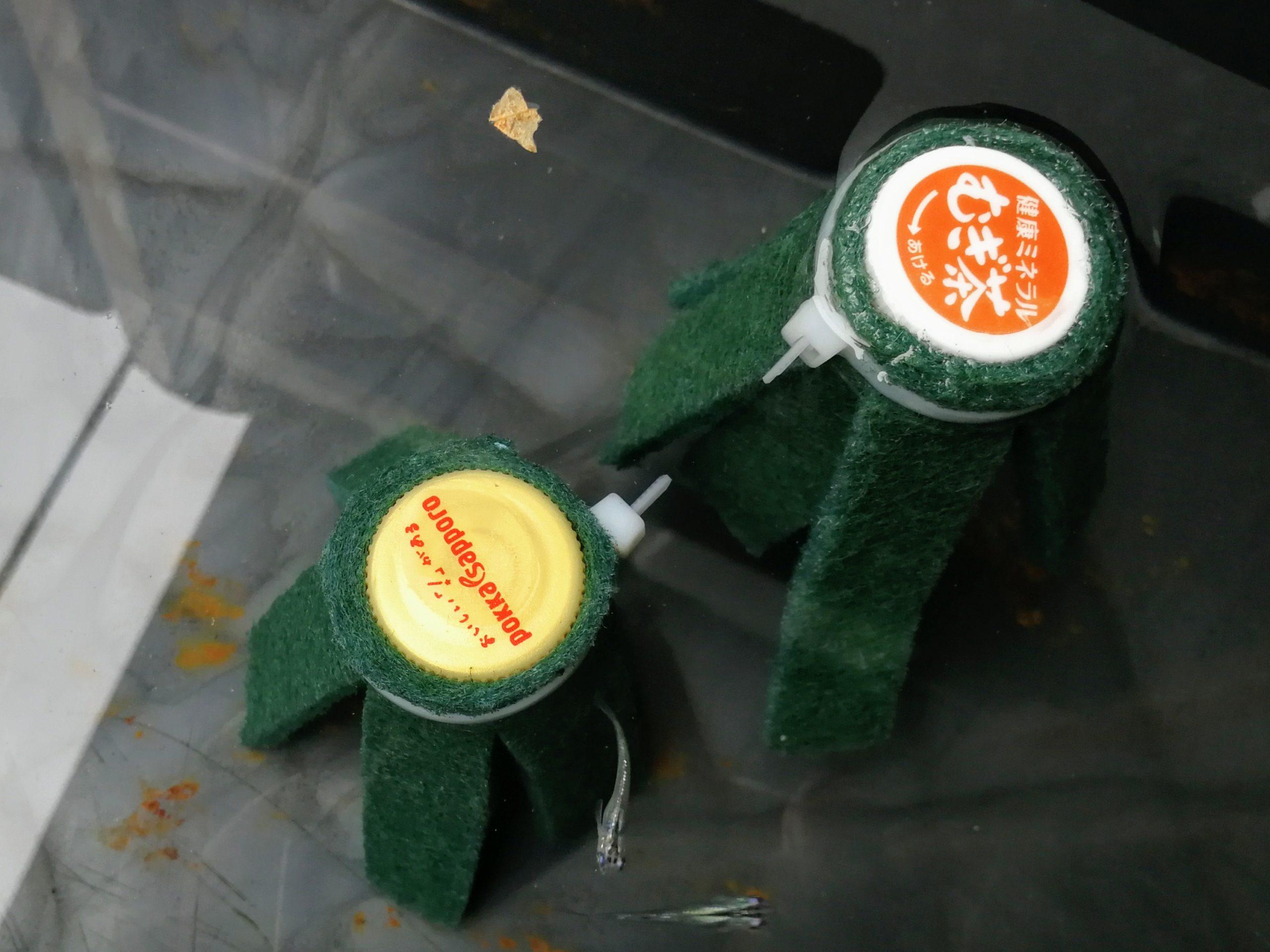 100円ショップとペットボトルキャップでつくったメダカの産卵床